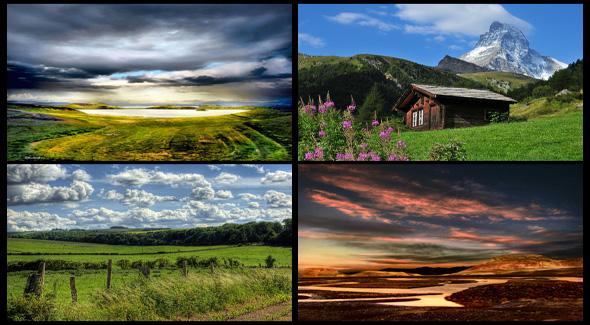 four-photo-collage